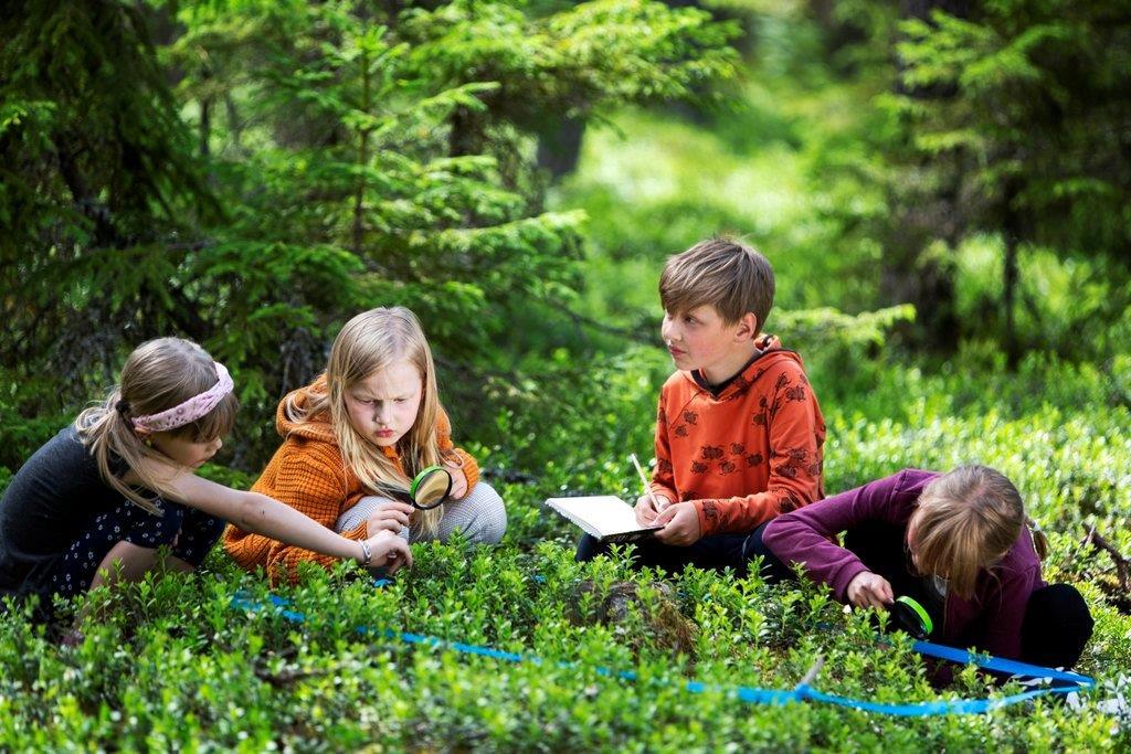 Neljä lasta tutkii metsää istuen. Yhdellä on suurennuslasi. Yksi tekee muistiinpanoja vihkoon.